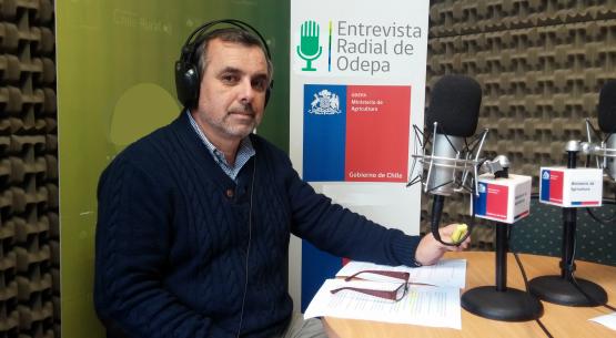 En la entrevista radial de Odepa, Marcelo Muñoz habla sobre la reunión la Comisión Nacional de Frutos Secos y Deshidratados