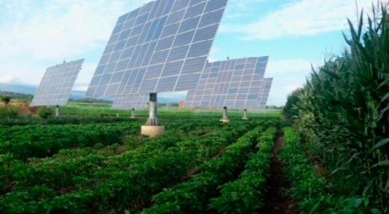 Coyuntura Internacional I: Mejores políticas para un sector agrícola productivo, sostenible y resiliente según países OCDE