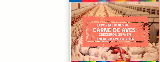 expor_carne_aves_carrusel