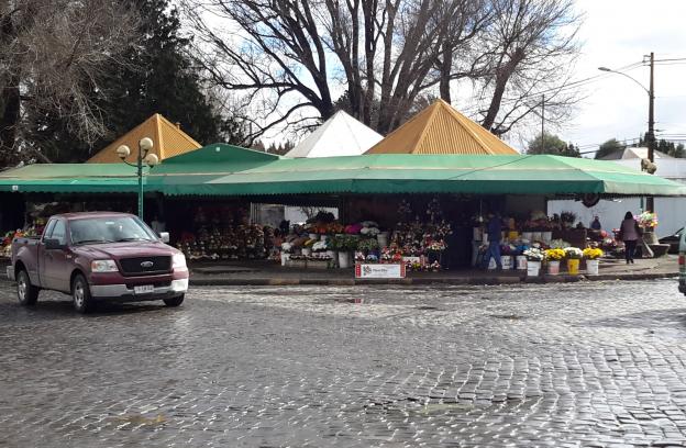 Odepa comenz a publicar los precios mayoristas de temuco for Viveros en temuco