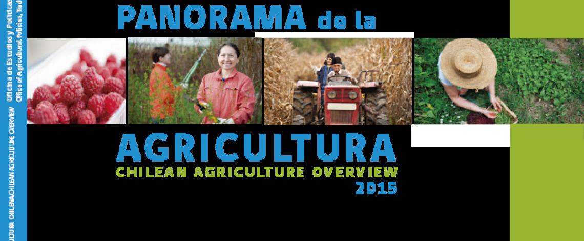Panorama de la agricultura chilena 2015