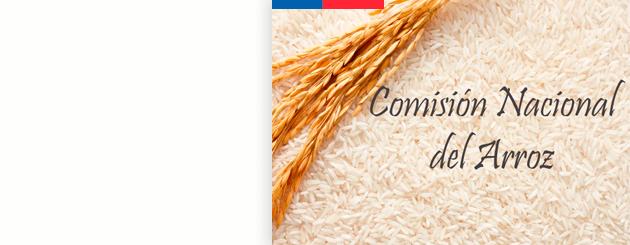 comision_arroz_carrusel