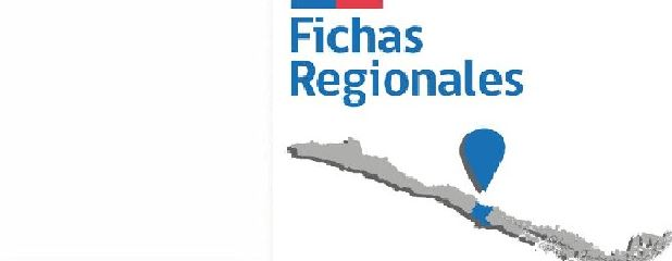 Carrusel fichas regionales