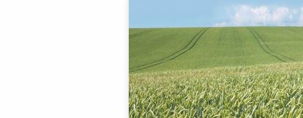 Carrusel para calendarioi matriz agricola 17.05.17