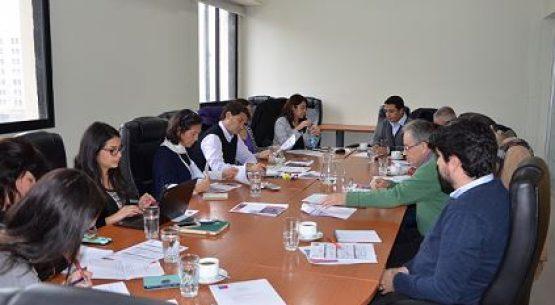 En el marco del Consejo Asesor del Ministro de Agricultura para la protección, promoción y desarrollo de la Denominación de Origen Pisco, se reunió el Grupo de Trabajo del Pisco