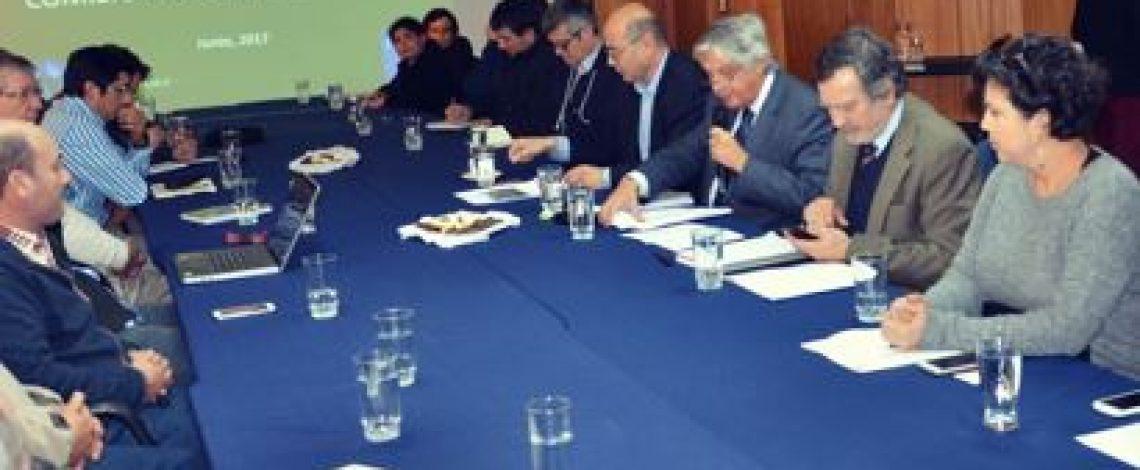 Con la participación de representantes de la industria arrocera, de productores y del sector público y privado, se realizó la reunión anual de la Comisión Nacional del Arroz, coordinada por Odepa.