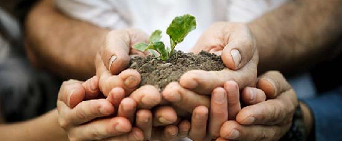 Propuesta de proyecto de ley sobre prácticas comerciales injustas en los sectores agropecuario y forestal