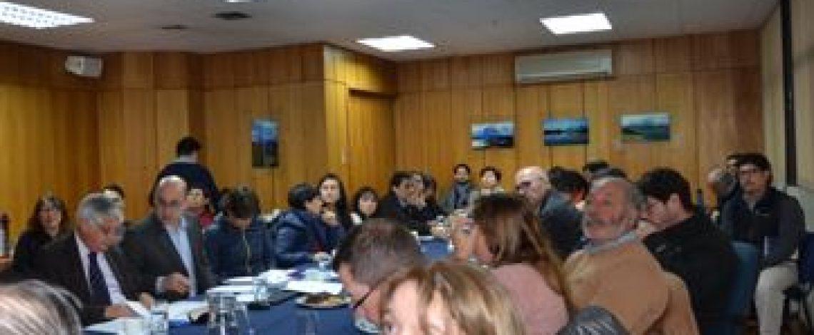 Con la participación de representantes de la industria, de productores orgánicos y del sector público y privado, se realizó reunión de la Comisión Nacional de Agricultura orgánica, liderada por el subsecretario de Agricultura, Claudio Ternicier, y coordinada por el subdirector de Odepa, Teodoro Rivas