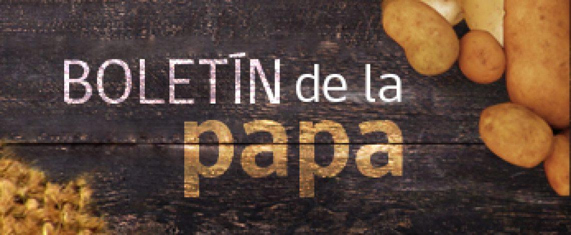 Boletín de la papa. Agosto de 2015