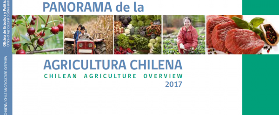 Panorama de la agricultura – Chilean agriculture overview 2017