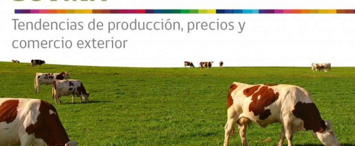 Boletín carne bovina: tendencias de producción, precios y comercio exterior. Marzo 2013