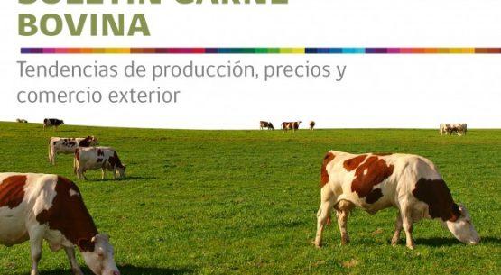 Boletín carne bovina: tendencias de producción, precios y comercio exterior. Julio 2013