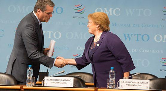 Perspectivas para la agricultura en la OMC