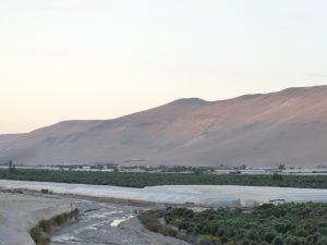 Valle_Azapa1