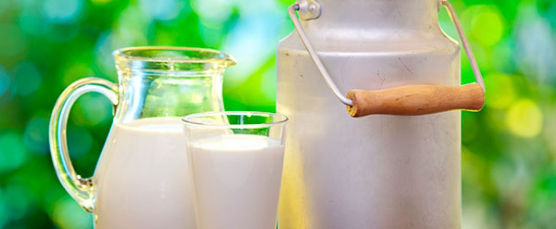 Estrategia de sustentabilidad para el sector lechero