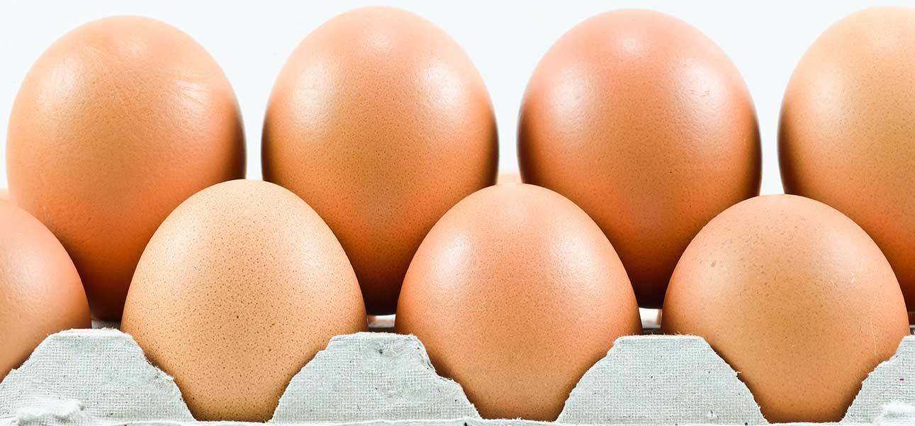 bandeja con huevos