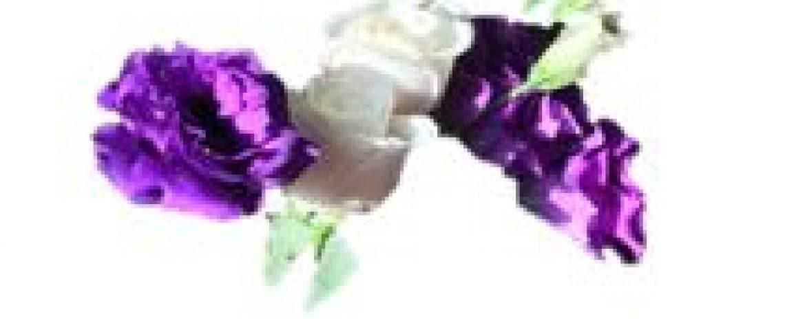 Holanda, EE.UU. principales países de destino de las flores de corte. Consulte en línea la Matriz de Comercio Exterior de Odepa