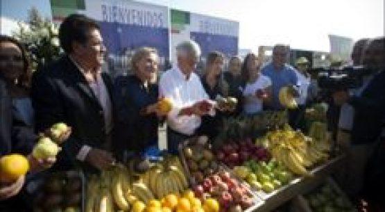 Plataforma de servicios para la Agricultura Familiar Campesina (Indap)