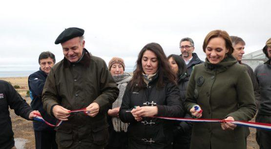 """Ministro Walker en Magallanes: """"En esta región cada agricultor es un pequeño gran héroe"""""""