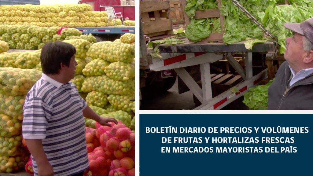 Boletín Diario de precios y volúmenes de frutas y hortalizas