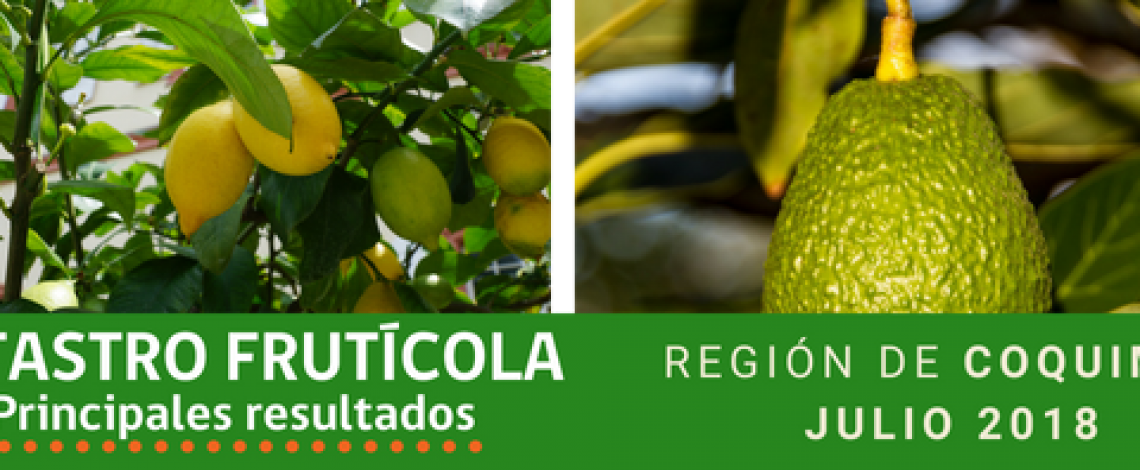 Odepa y Ciren presentaron los resultados del Catastro Frutícola de la Región de Coquimbo