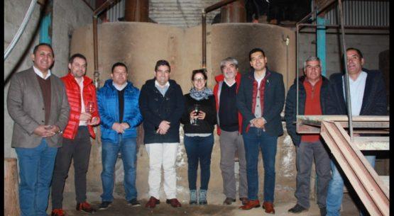 Directores del agro buscan alternativas de apoyo para productores de uva pisquera de Rapel