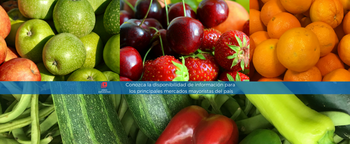 Odepa elabora video sobre consulta diaria de precios mayoristas de frutas y hortalizas