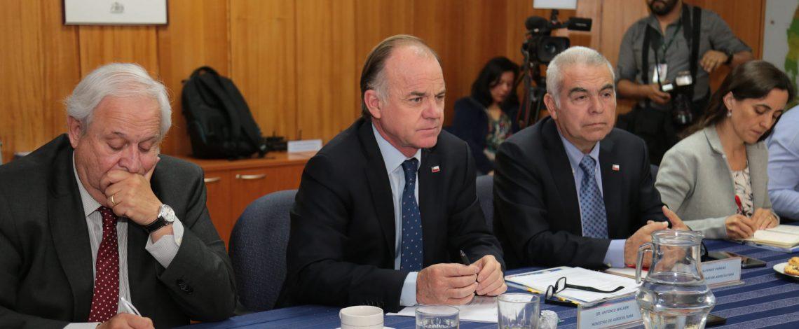 """Ministro Walker en comisión de agilización del SAG: """"Como Ministerio, queremos ser el mejor aliado de los emprendedores agrícolas"""""""