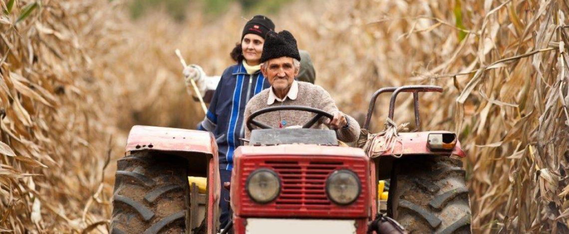 Estudio sobre instrumentos de apoyo para implementar la Política Nacional de Desarrollo Rural en La Araucanía