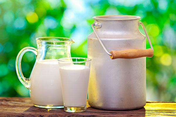 Jarrón y bidón de leche
