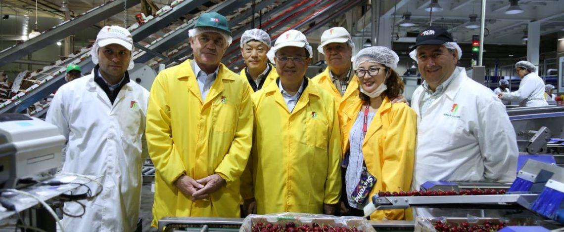 """Ministro Walker junto al Ministro de Aduanas chino visitan empresas agroexportadoras: """"Nos ganamos la confianza y ahora lo que resta es responder con nuestros productos a esa confianza"""""""