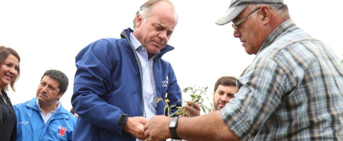 Ministro Antonio Walker decreta zona de emergencia agrícola 10 comunas de la región de O'Higgins