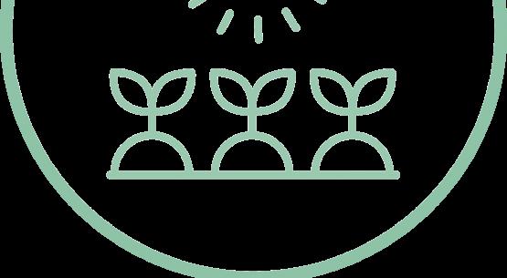 Comisión Nacional de Agricultura Orgánica