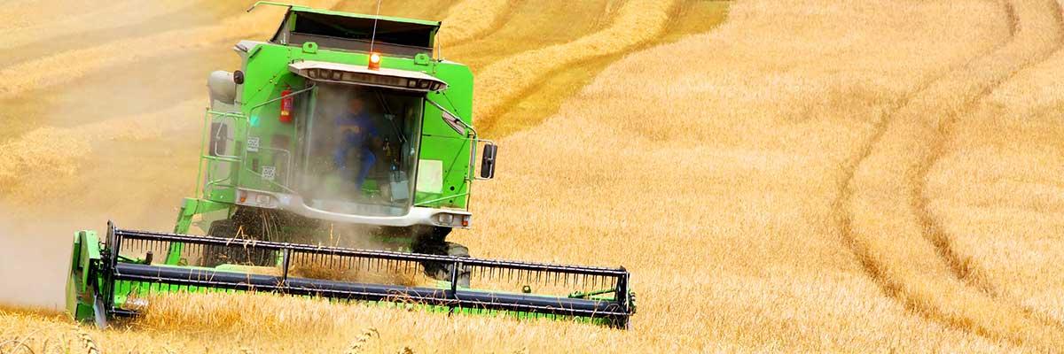 Foto de una segadora en un campo de trigo