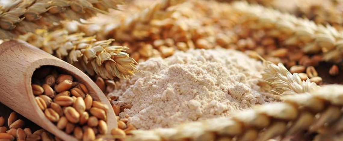 Análisis del comportamiento reciente del precio de la harina de panificación