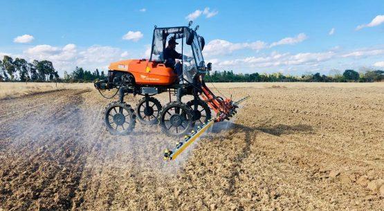 ¿Cómo viene la temporada del arroz 2019/20 – 2020/21?