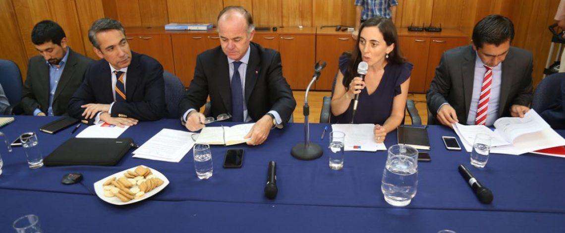 Ministro de Agricultura encabezó una nueva reunión de la Comisión Nacional de Apicultura, coordinada por la directora de Odepa