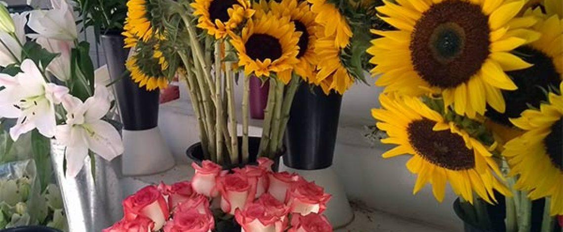 Exportaciones de flores de corte crecieron 9,2% en enero-febrero de 2019
