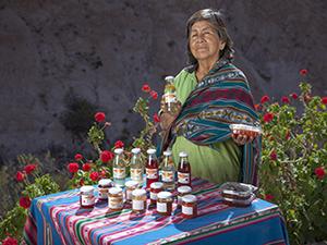 Ficha Regional Arica y Parinacota