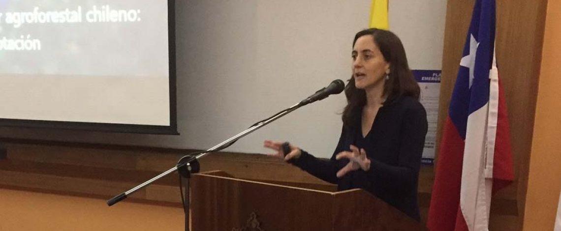 Directora de Odepa expone en seminario sobre el Cambio Climático
