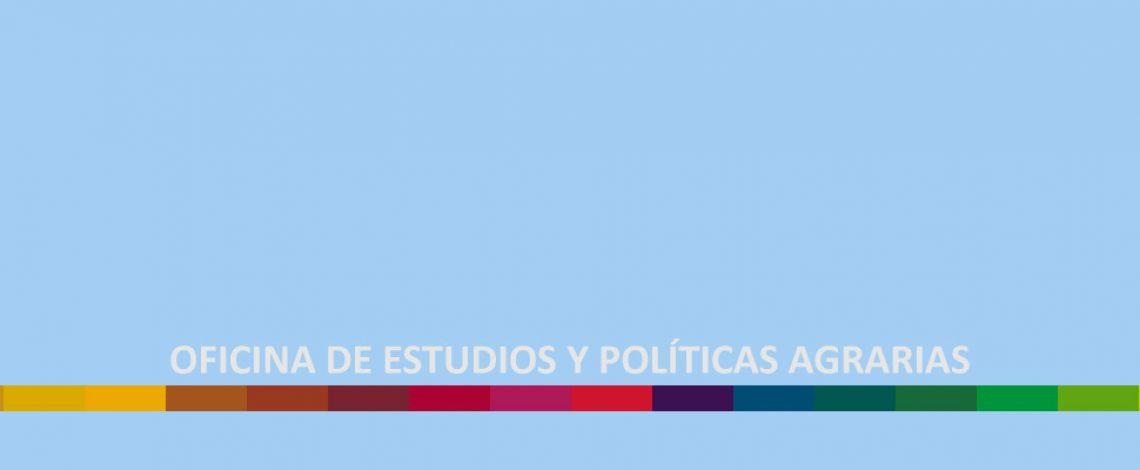 Cuenta Pública de Odepa 2018