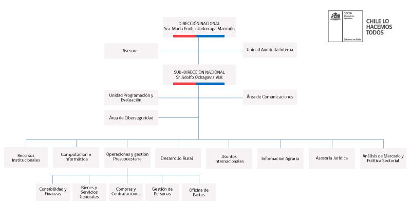 organigrama de Odepa