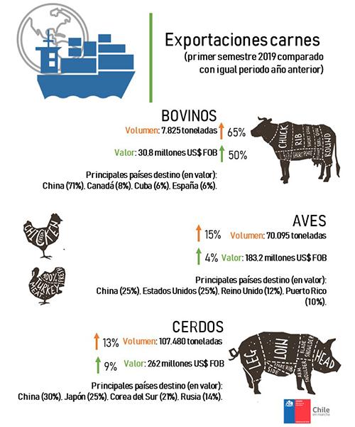 Infografía sobre Exportaciones de Carnes - julio 2019