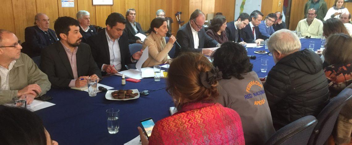 Hoy se reunió la Comisión Nacional de Apicultura