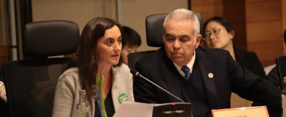 """Directora de Odepa participa de la """"5ta Reunión Ministerial de Seguridad Alimentaria"""" de APEC"""