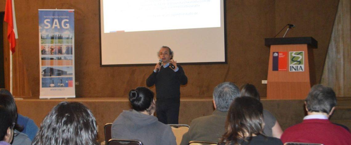 Profesional de Odepa expuso en seminario sobre la papa