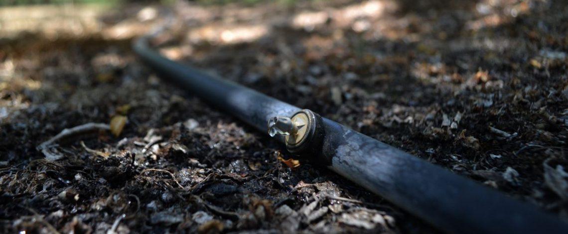 El riego por goteo es el sistema más utilizado por los productores de frutas en las siete regiones ubicadas en el sur del territorio