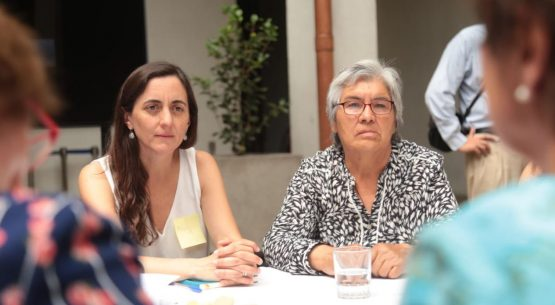 """Directora de Odepa participa en el lanzamiento de """"El Chile que queremos"""" en La Moneda"""