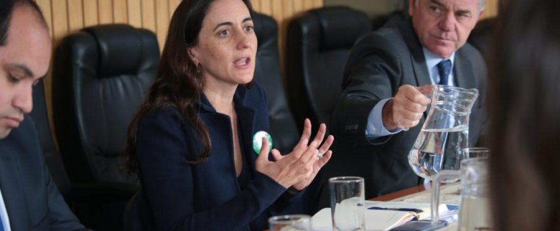 Directora de Odepa y ministro de Agricultura se reúnen con alcaldes rurales y organizaciones de la sociedad civil