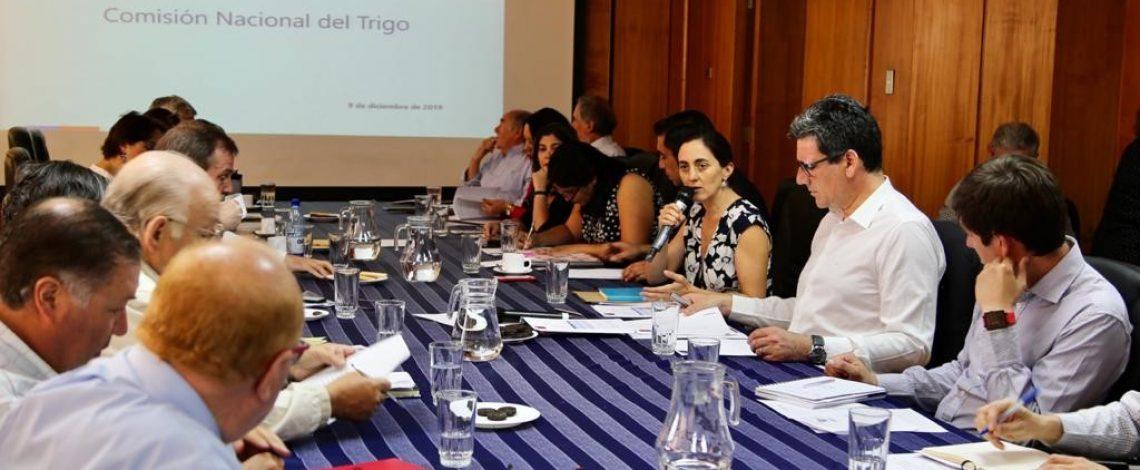 Se realizó una reunión de la Comisión Nacional del Trigo